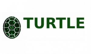 the turtle network